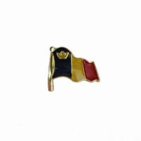 Alumni Flag Lapel Pin